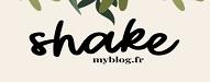 damasketdentelle Les Meilleurs Blogs DIY de 2019